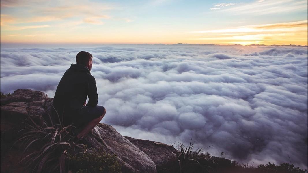 Помогите понять правильно ли я выбрала свой будущий путь?