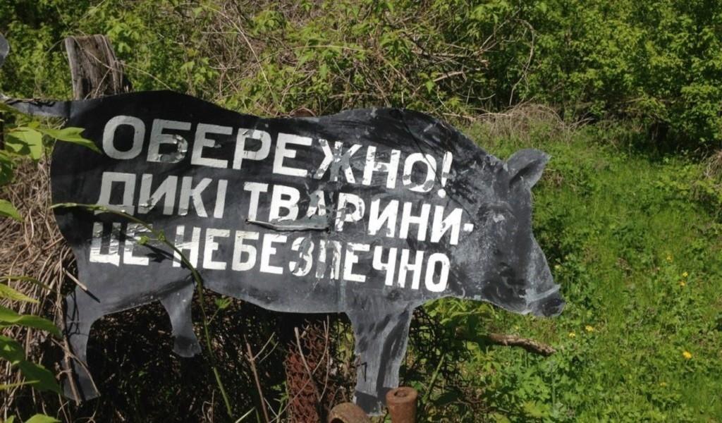 Чернобыль: путешествие в зону отчуждения
