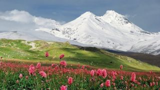 Кавказ: геология, ландшафт и флора на Кавказе