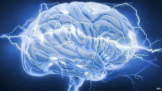 Интересные факты о человеческом мозге. Статья про мозг