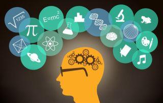 Нейропсихология: общие понятия в нейропсихологии