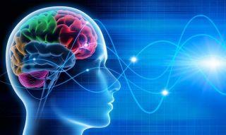 Определение памяти. Общая характеристика и развитие памяти у детей