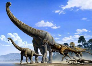 Опровергнут популярный миф о динозаврах