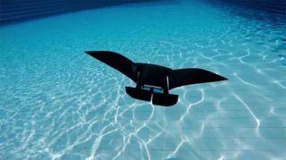 Спасатель на воде - робот Manta 3000
