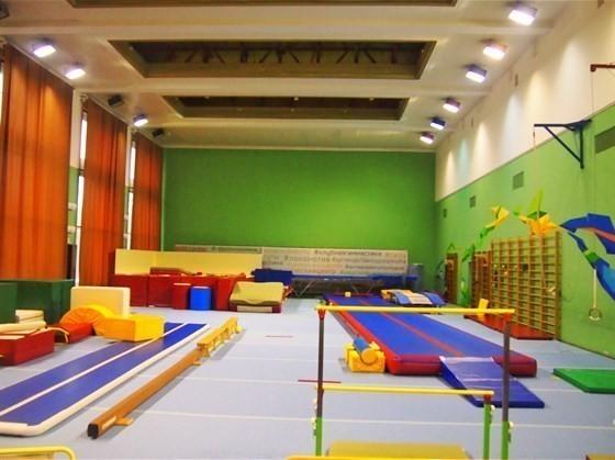 Европейский Гимнастический Центр Лужники