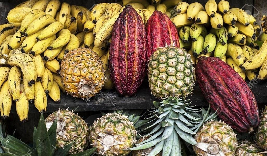 Путешествие по Эквадору: кухня провинции Манаби